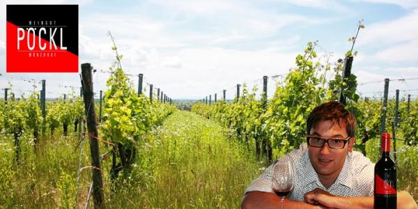 PÖCKL - velká vína Burgenlandu