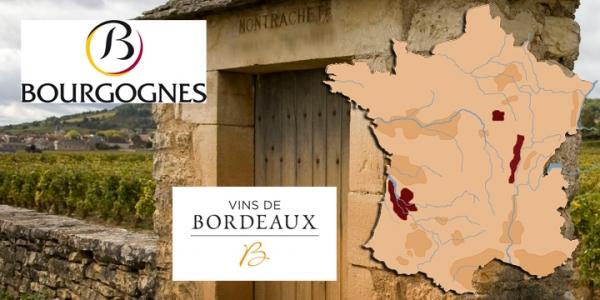 Bílá vína Francie (Burgundsko + Bordeaux)